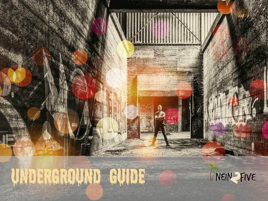 Podcast Geschäftsidee Underground Guide